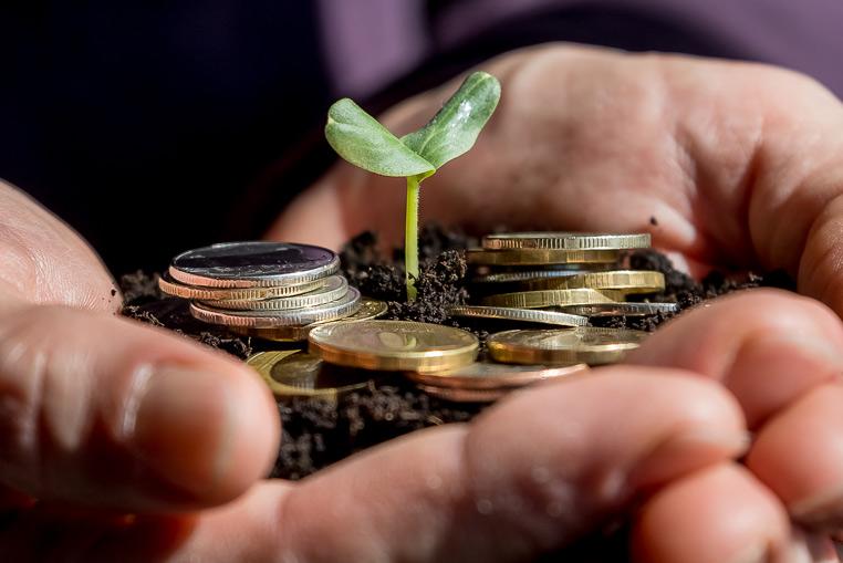 Administración y Finanzas ERP Hortofrutícola sector agroalimentario