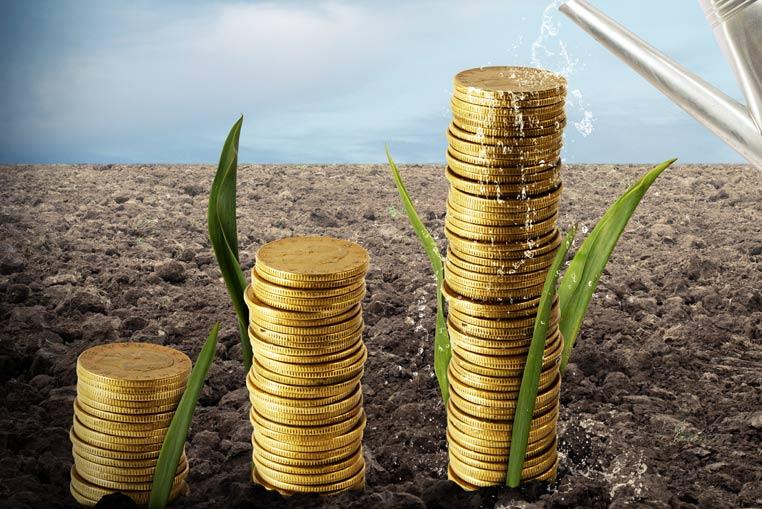 Administracion-y-Finanzas-Software para Cooperativas agrícolas-sector-agroalimentario