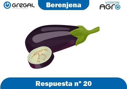 Berengena-respuesta-nº20-adivinanzas de frutas-erp-agro