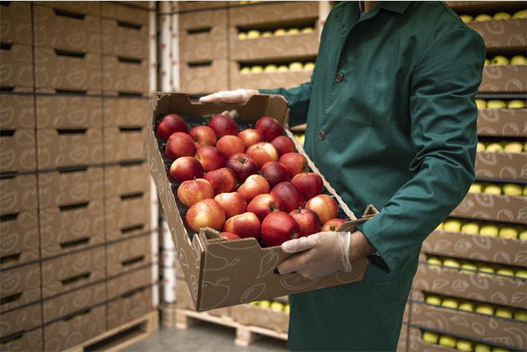 Control de campos y parcelas ERP Hortofrutícola