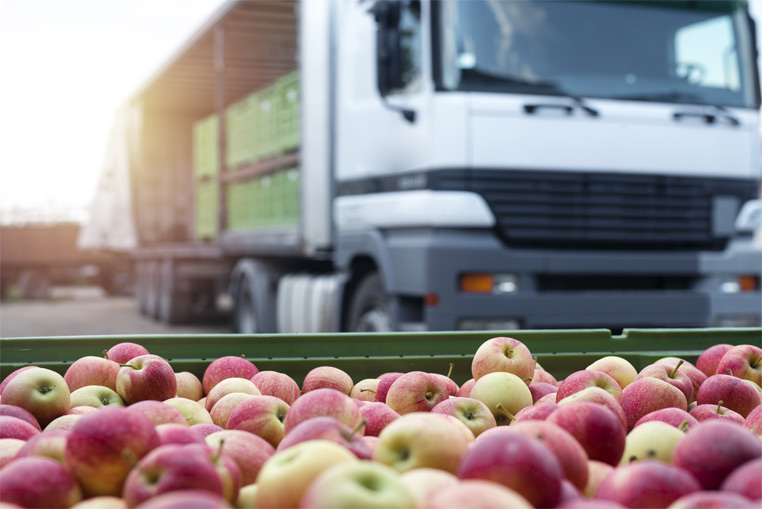 Costes y almacén de mercancía con el Software para Cooperativas agrícolas
