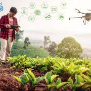 Digitalizacion en el sector agroalimentaio erp agro