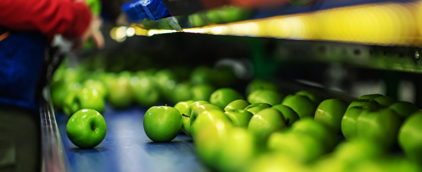 ERP-software-for-fruit and vegetable-plants-for-companies-in-agri-food-sector