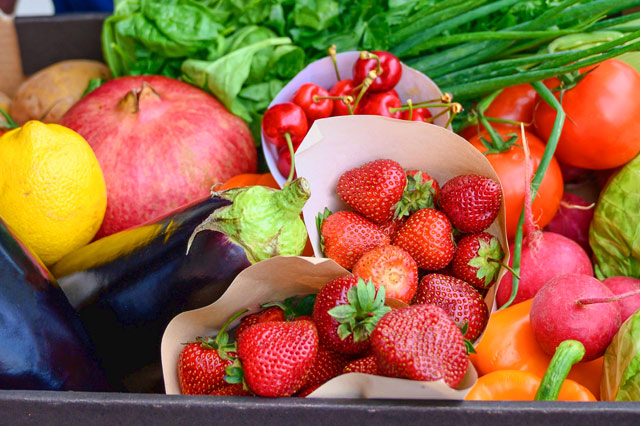 ERP Software for fruit and vegetale processing plants