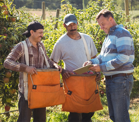 Human Resources with ERP Software for Fruit and Vegetable centrals
