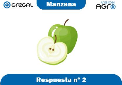 Manzana-respuesta-nº2-adivinanzas de frutas-erp-agro