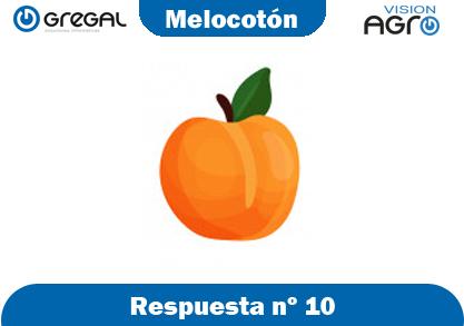 Melocotón-respuesta-nº10-adivinanzas de frutas-erp-agro