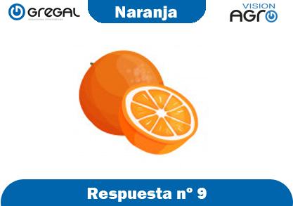 Naranja-respuesta-nº9-adivinanzas de frutas-erp-agro
