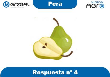 Pera-respuesta-nº4-adivinanzas de frutas-erp-agro