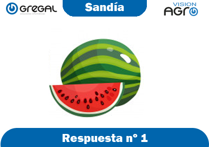 Sandía-respuesta-nº1-adivinanzas de frutas-erp-agro