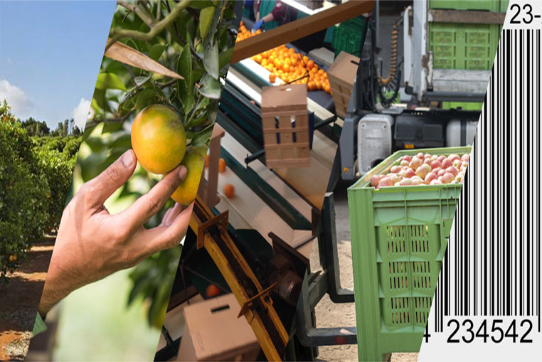 Traceability management with the ERP Software for Horticultural Plants