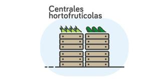 centrales-hortofrutícolas
