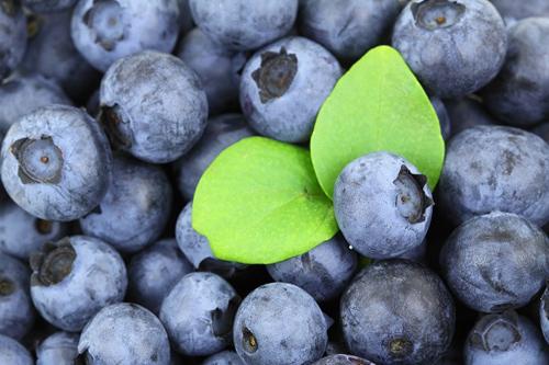 la revolución digital en el sector agroalimentario